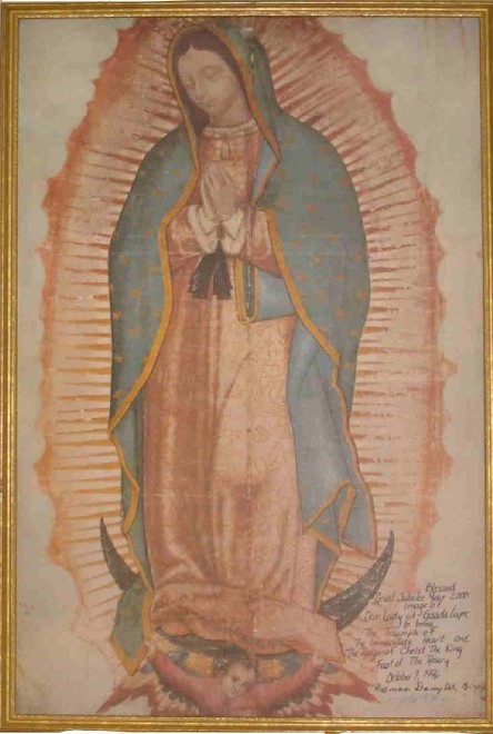 Our Lady S Image On The Tilma Our Lady Of Guadalupe